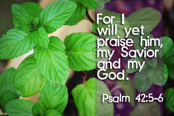 psalm42propofbobbiejbyrd