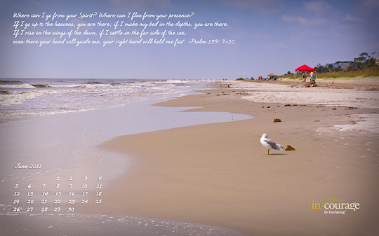 june 2011 calendar. June desktop wallpaper.