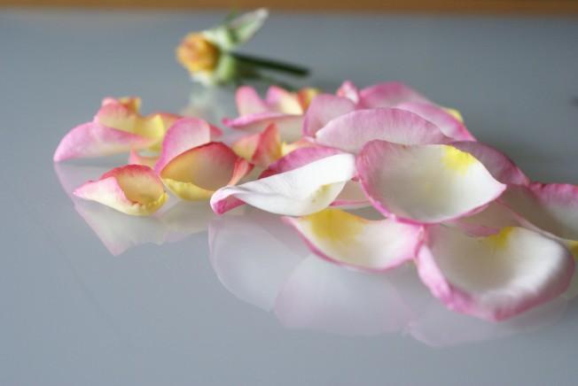 rosepetals