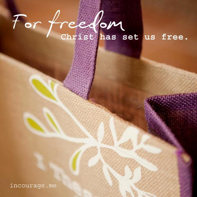 freeset bag closeup