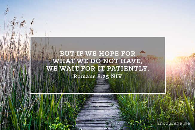 20140518_SundayScripture_Romans8
