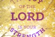 20140714_StephanieBryant_Nehemiah