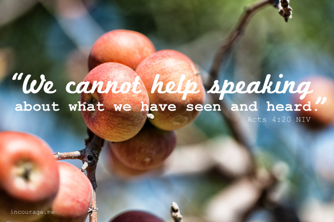 20141024_DawnCamp_apples