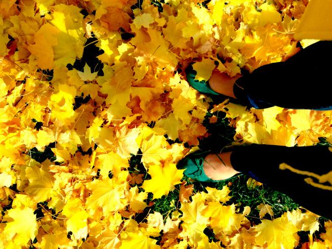 20141112_AliaJoy_autumnlovesong