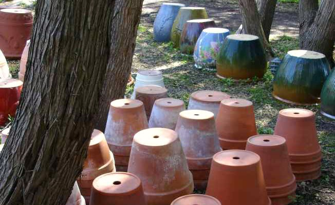 A lawn full of garden pots