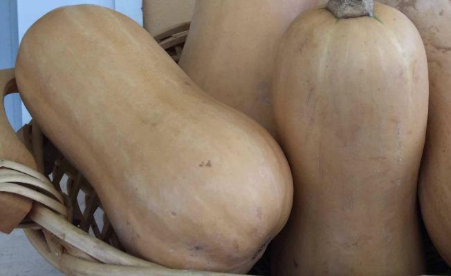 pale gourds in a basket