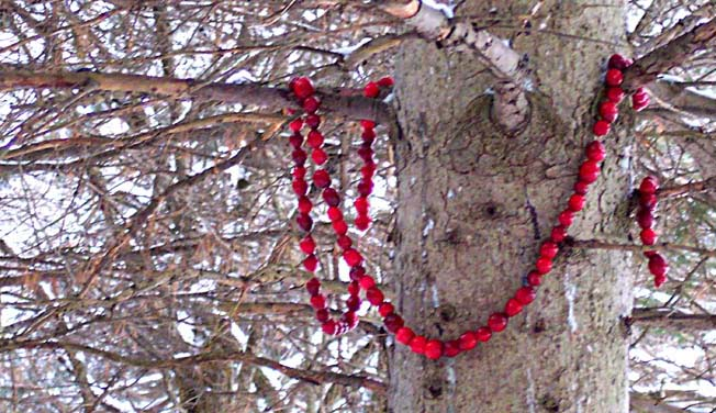 Christmas Garland in Tree